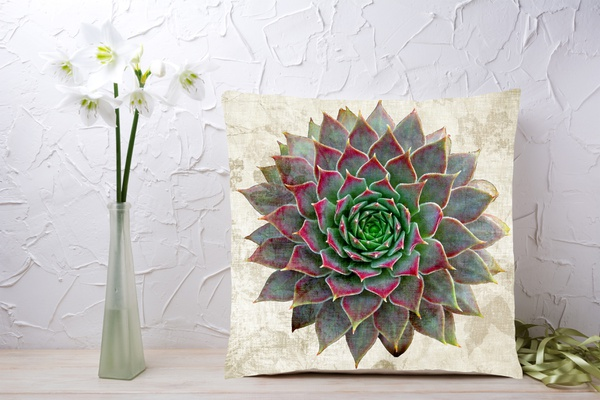 C023 cushion picture