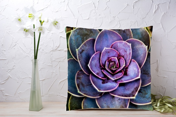 C026 cushion picture