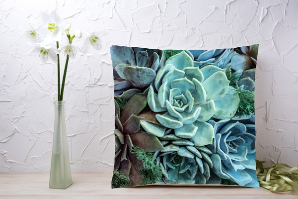C027 cushion picture