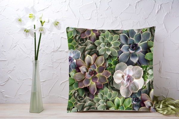 C028 cushion picture
