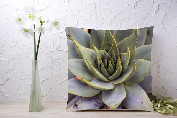 C029 cushion picture