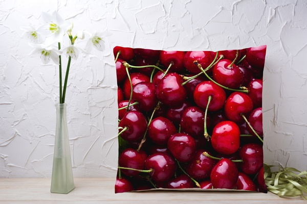 C045 cushion picture