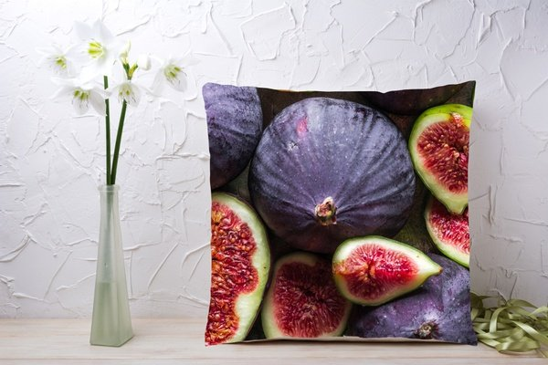 C047 cushion picture