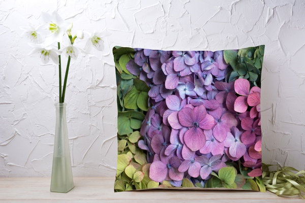 C048 cushion picture
