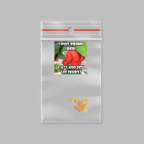 7 pot primo (red) chilli-pepper- 1,473,480 scovilles (10 seeds) picture