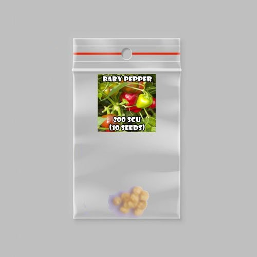 Baby chilli-pepper - 200 scovilles (10 seeds) picture