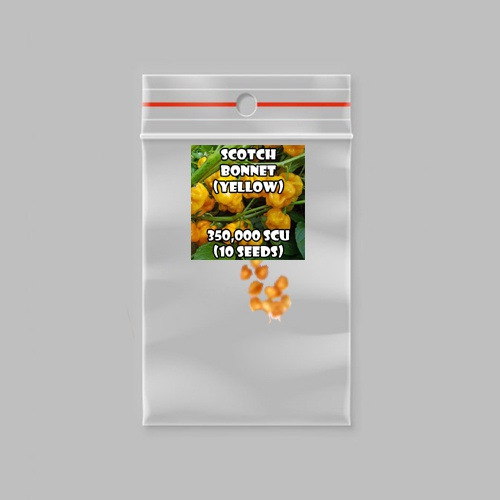 Scotch bonnet chilli-pepper (yellow) - 350,000 scovilles (20 seeds) picture