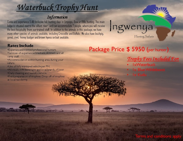 Waterbuck hunting trophy picture