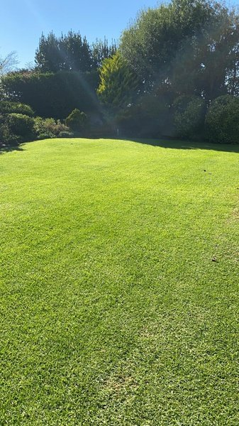 Lawn maintenance picture