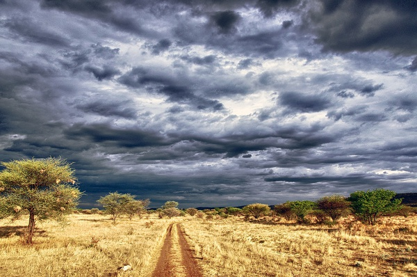 7 day southern camping namibian adventure picture