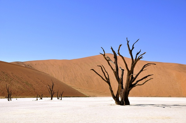 16 day self drive namibia picture