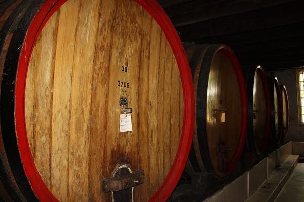 Stellenbosch wine tour picture
