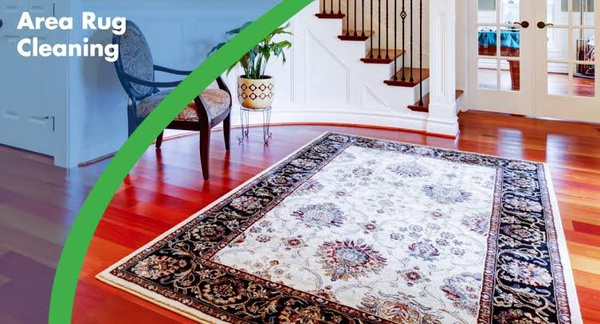 Persian rug & area rug cleaning picture