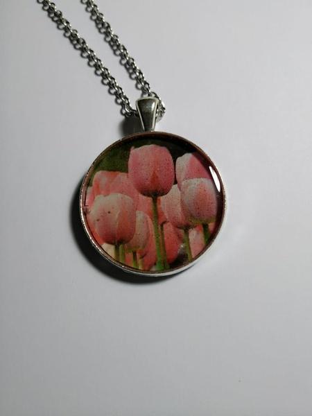 Tulip - classic picture